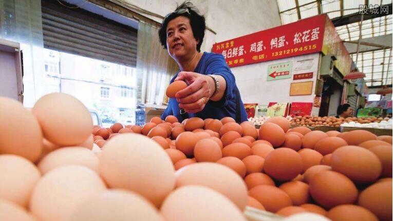 鸡蛋期价企稳反弹