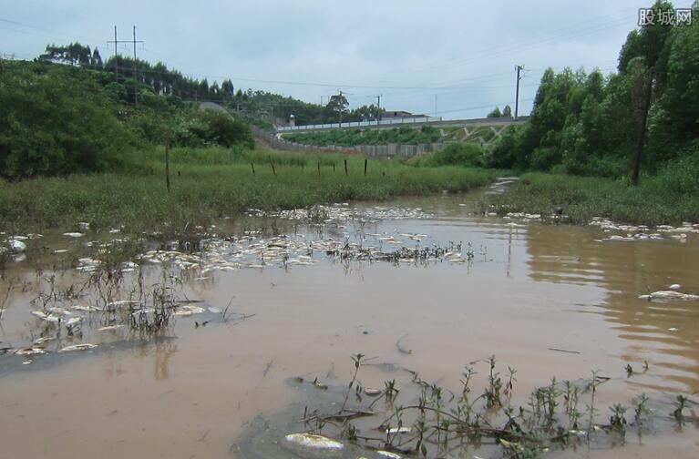 水污染防治法修正案