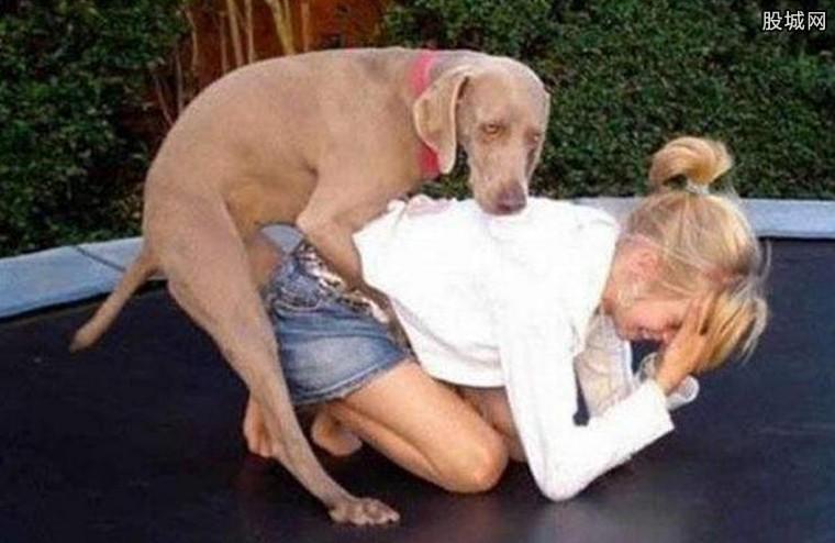 狗跟人不雅视频 纷纷引起了网友的关注(图)
