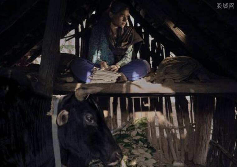 经期女性住牲口棚