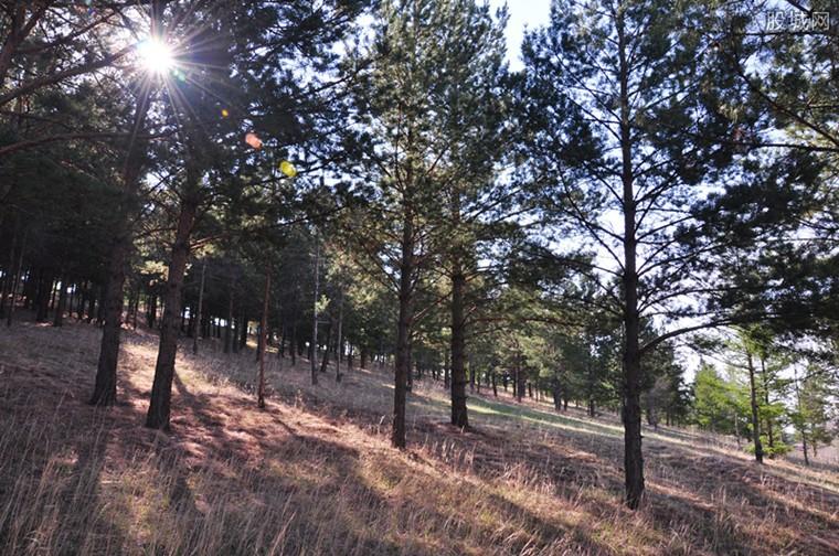森林生态效益补偿制度