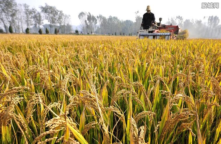 农业部加快发展农业生产