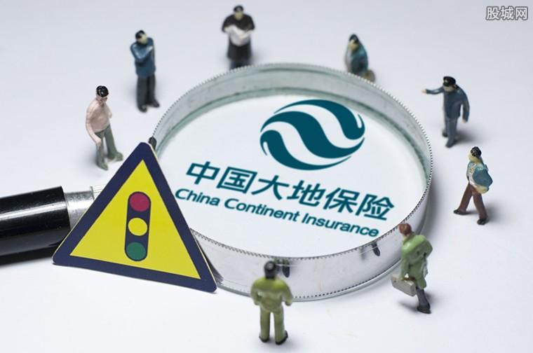 大地保险延伸产业链