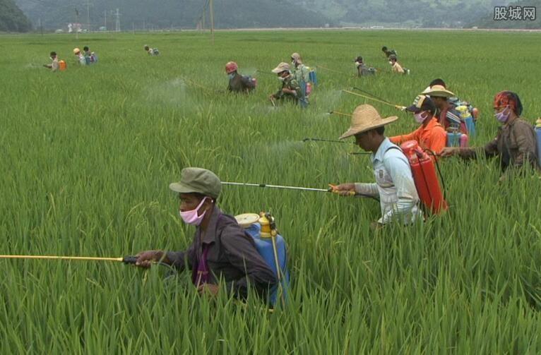 宁夏不断改善农村环境
