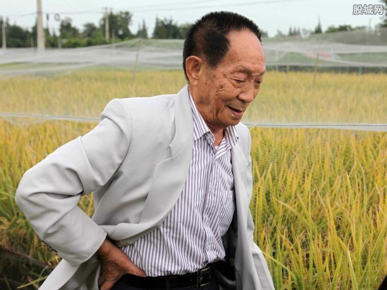 袁隆平访水稻公园