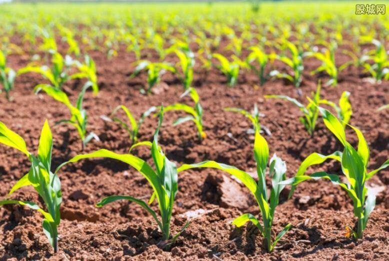 保障农业生产安全