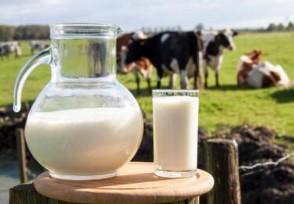 全面部署乳品市场 进一步加大奶业扶持政策落实力度