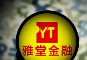 雅堂董事长自首 杨定平涉嫌违法被查投资者的钱打水漂