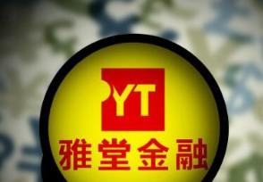 雅堂董事长自首 杨定平涉嫌违法犯罪自觉投案
