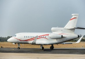 扬子江航空将推众筹飞机 把飞机分为30万份出售