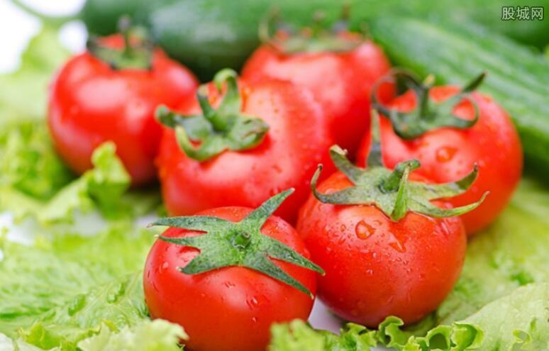 蔬菜批发价格持续上涨