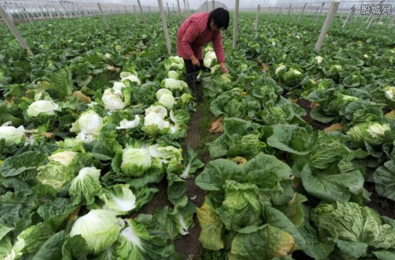 农副产品价格将逐步回落