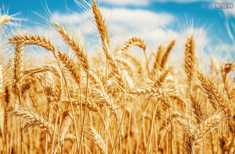 三部门全面推进现代农业建设
