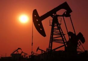 俄能源部长诺瓦克:石油天然气领域可以实现去美元化