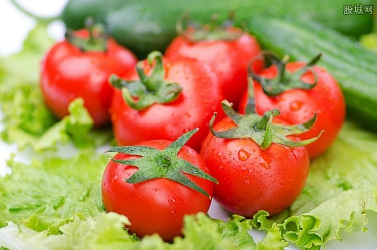 西红柿价格飙涨