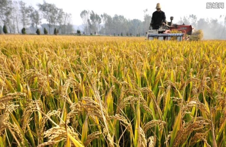 重庆特色粮油产业发展