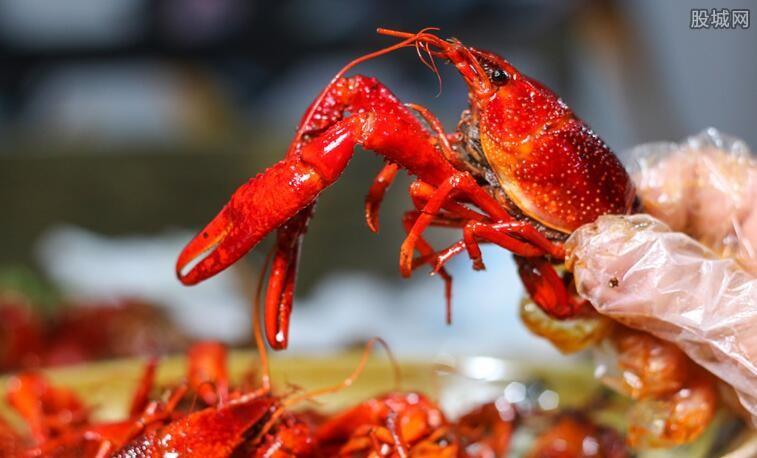 小龙虾专业最新消息