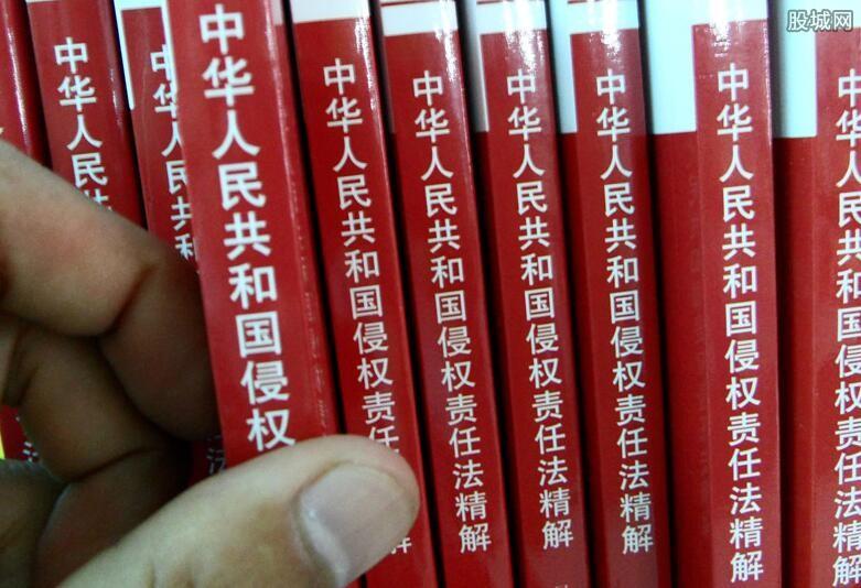 中国侵权法