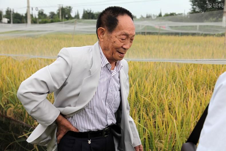 水稻之父袁隆平