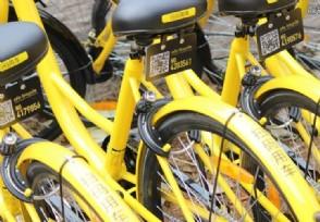 股票杠杆软件首个共享单车乐园 无处安放的报废单车有望重焕新生