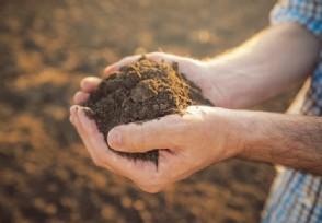 稀土产业景气指数发布 今年指数同比上涨超22点