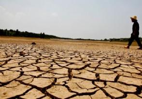 中央财政下达补助资金 支持高标准农田水利建设