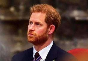 哈里周边清仓甩卖 退出皇室经济损失大