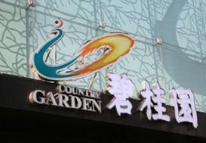 上线超1.7万套特惠房源 碧桂园直播卖房首秀