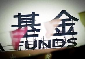 基金定投是什么意思 揭这种投资方式如何赚钱的