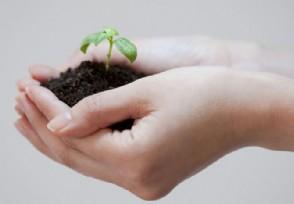 江苏环保集团挂牌成立 加快补齐环保基础设施短板