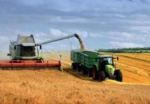 乡村振兴战略实施开局良好 农业发展方式加快转变