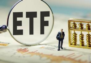 """看好猪肉板块投资机会 市场首只""""养猪""""ETF问世"""