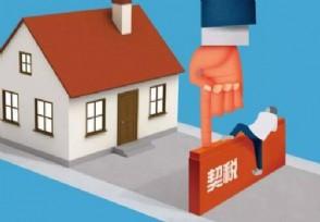 买房契税应该怎么缴 缴费标准是这样的