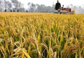 多部门联合印发管理办法规范国家农业科技园区管理