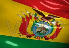 玻利维亚疫情最新通报临时总统新冠检测阳性