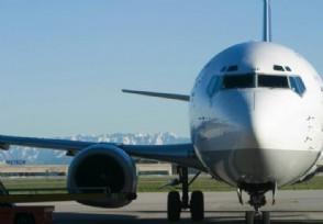 阿联酋航空裁员9000名员工将遭遇裁撤