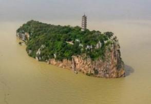 告急的鄱阳湖影响到底有多大直接经济损失ㄨ达64亿元