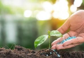 发改委发布通知 组织开展绿色产业示范基地建设