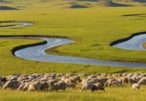 内蒙古新增境外输入5例 来看今天最新疫情消息