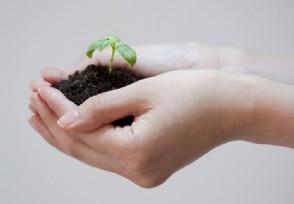 环保行业快速扩张 企业融资需求强烈