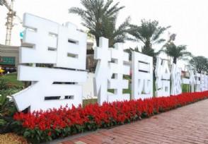 碧桂园上半年营收1849亿元 多项指标保持行业前列