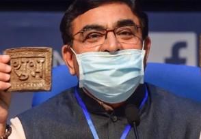 印度推出牛粪芯片 竟然说可以预防疾病
