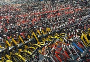 共享单车日均订单量交通运输部公布最新数据
