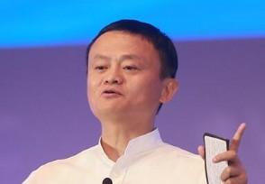 马云将成全球第11大富豪总资产达到716亿美元