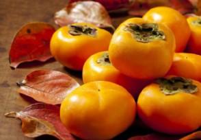 日本纹平柿子拍出天价最贵∞一箱高达10万日元