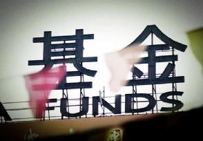 基金怎么看当天是下跌还是大跌投资者需要了解