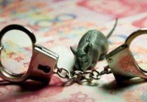 老鼠仓是什么意思?一般要潜伏几天