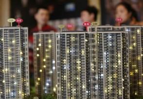 央视探访深圳万人抢房楼盘 严厉打击投机炒房行为