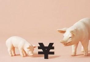 千家房企跨界养猪 红利期还有多久?