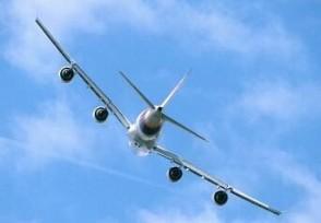 春运首日过半客运航班被取消 取消占比51.93%